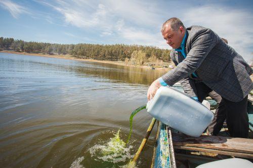 хлорелла инструкция очистка сточных вод